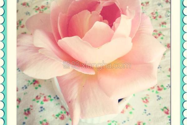 玫瑰花冰淇淋的做法