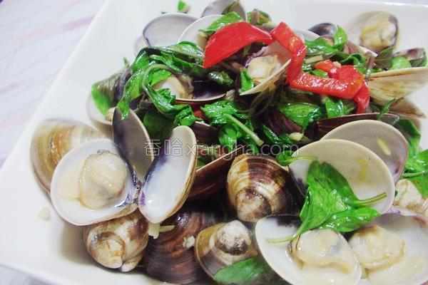 塔香蛤蜊的做法