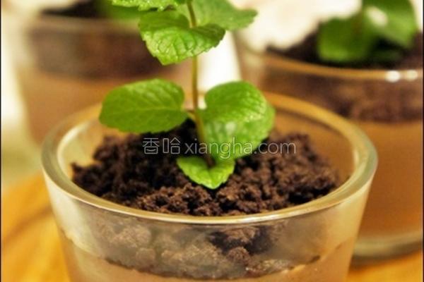 盆栽巧克力布丁的做法