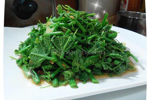 豆酱龙鬚菜的做法