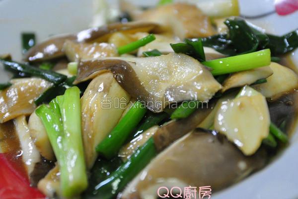 葱爆蚝油鲍鱼菇的做法