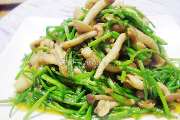 沙茶炒水莲海鲜菇的做法