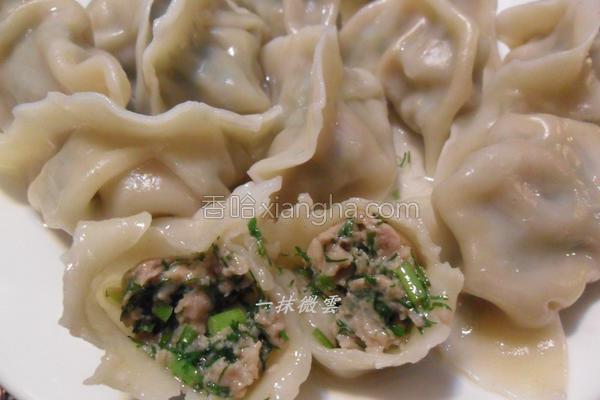 茴香水饺的做法