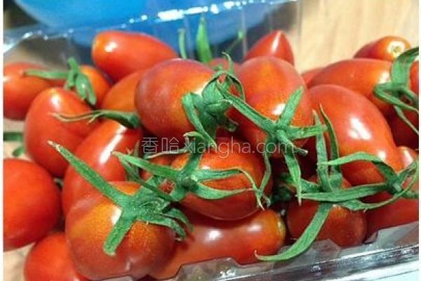 田力玉女小番茄的做法