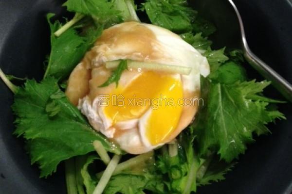 蒸鸡蛋水菜沙拉的做法