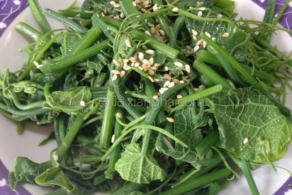 麻油清炒龙鬚菜的做法