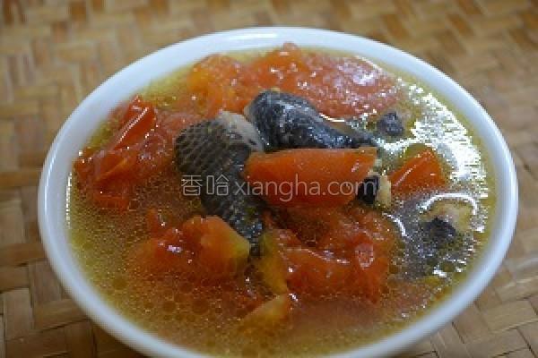 凤足番茄汤的做法