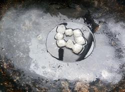 玉米莲藕排骨汤的做法图解12