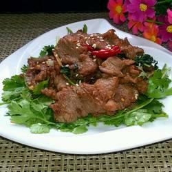 孜然羊肉片的做法[图]