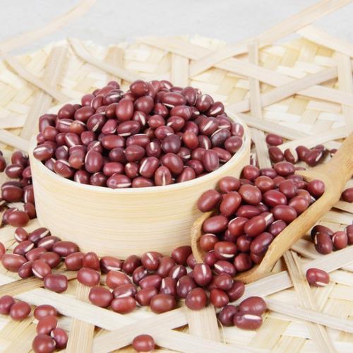 红豆[图]