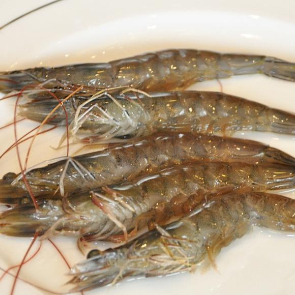 青虾[图]