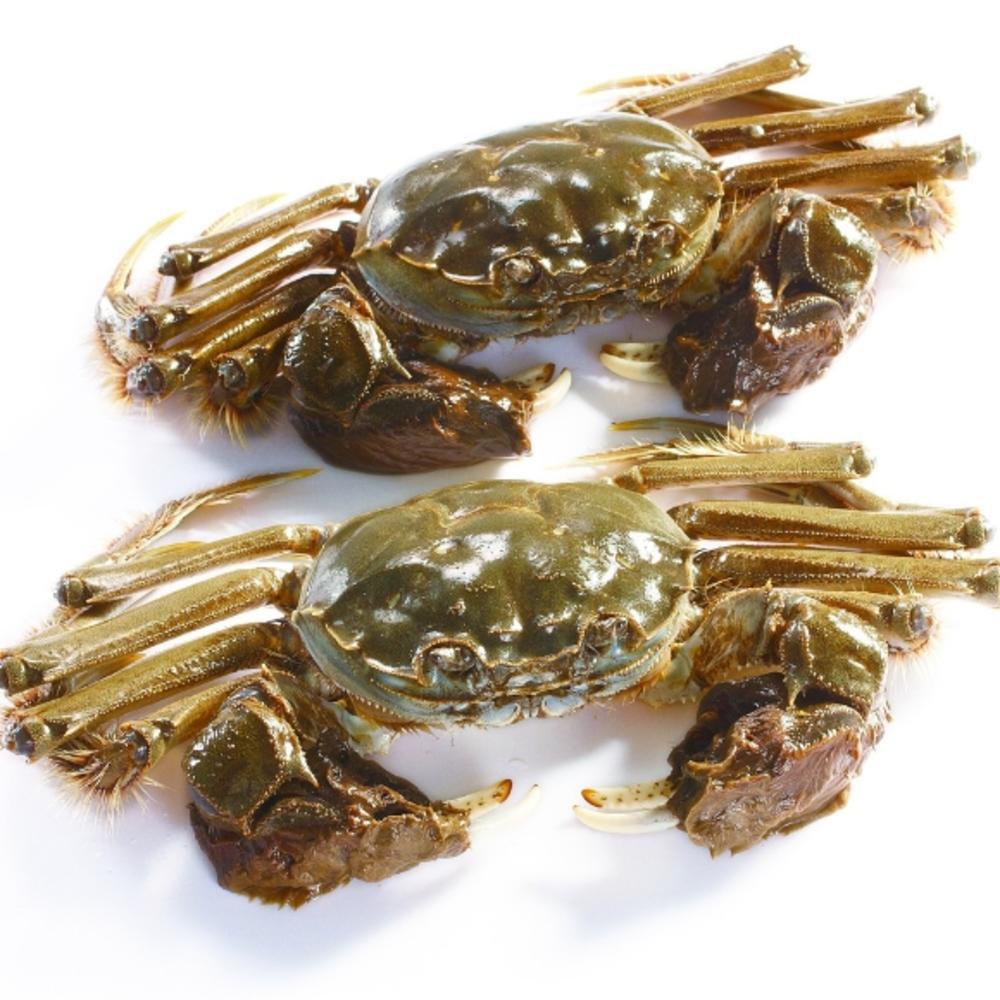 蒸大全的天下腊肠_蒸河蟹的做法菜谱-做法-荷兰豆炒河蟹美食家常图片