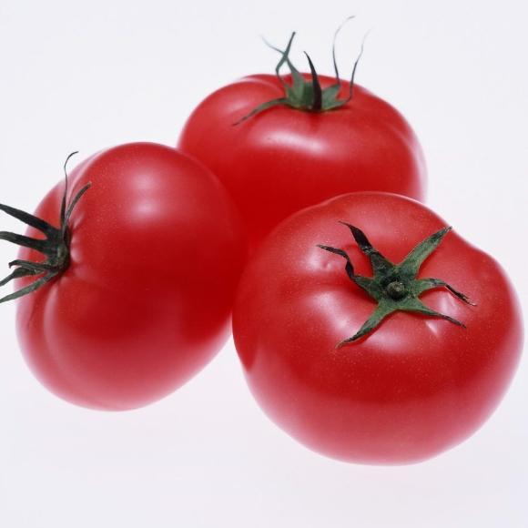 番茄[图]