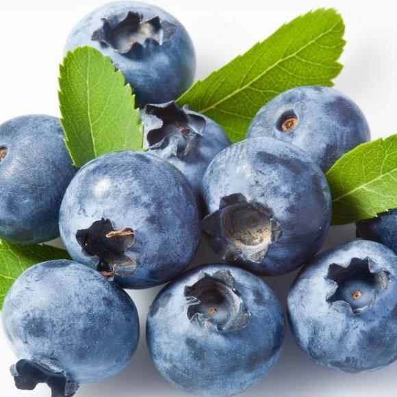 蓝莓[图]