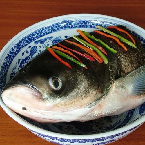 鱼头[图]