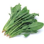 菠菜[图]