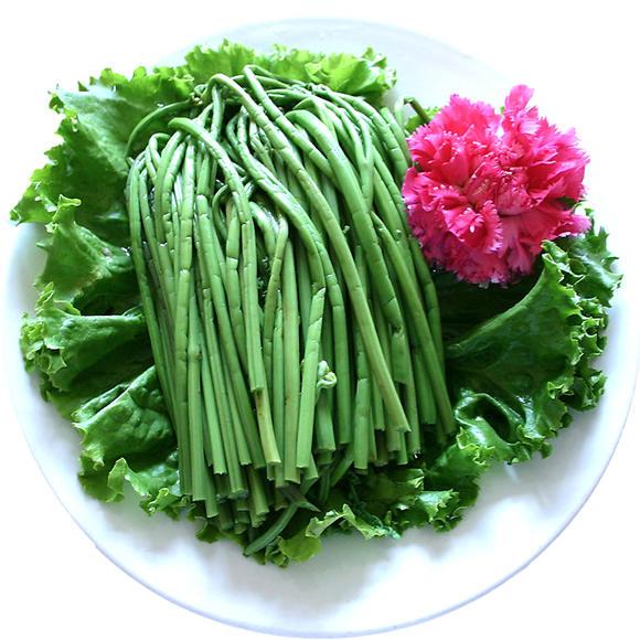 蕨菜[图]