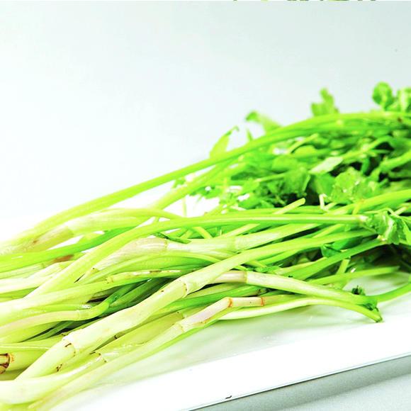 水芹菜[图]