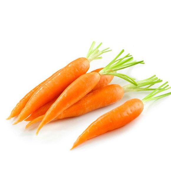 胡萝卜[图]