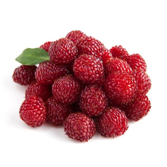 覆盆莓[图]