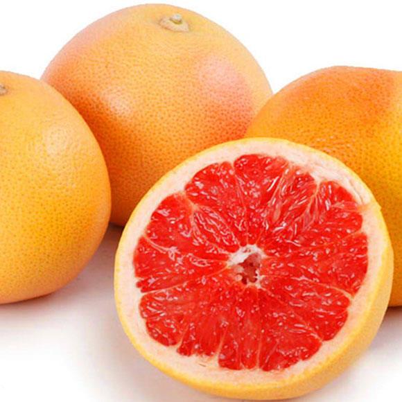 葡萄柚[图]