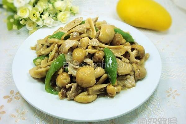青头菌炒肉片的做法