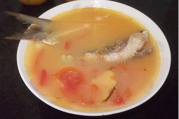 番茄鱼骨汤的做法