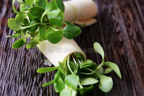 香椿苗豆卷的做法