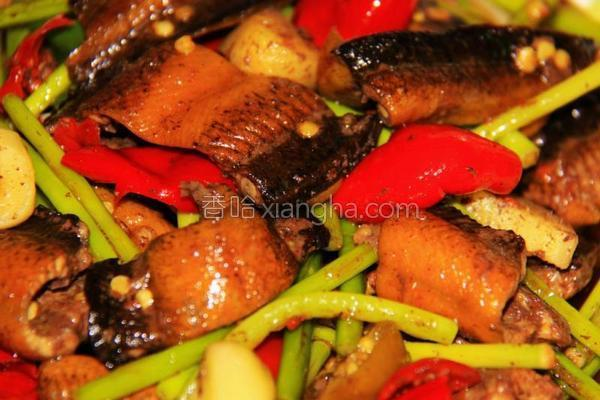 泡椒鳝鱼的做法