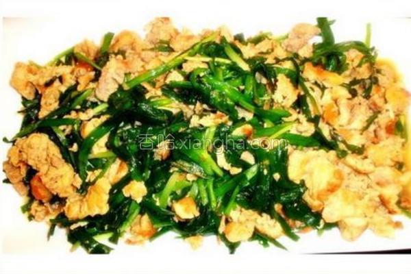 韭菜炒鸡蛋猪肉碎的做法