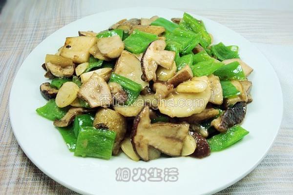 素炒白牛肝菌