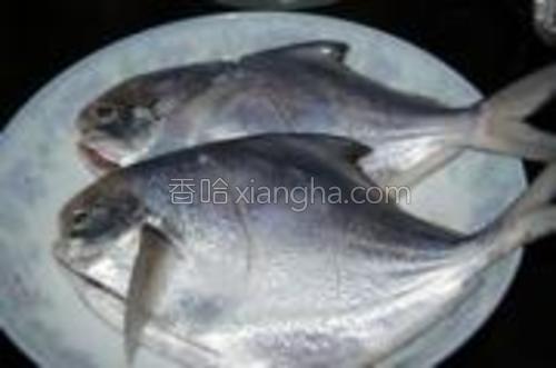 鲳鱼去除内脏,在鱼身两面上划两刀,用盐腌30分钟。