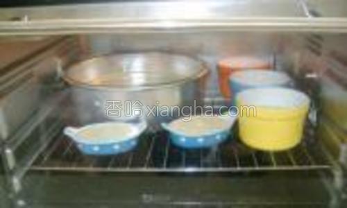 烤盘中注凉水,放最后一层,将模具放在烤网上,放倒数第二层,烤60分钟左右;
