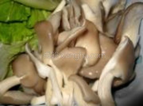 蘑菇、生菜、香葱处理干净备用。