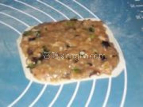 取一张混沌皮,将馅料均匀涂抹在其上约0.5cm厚。
