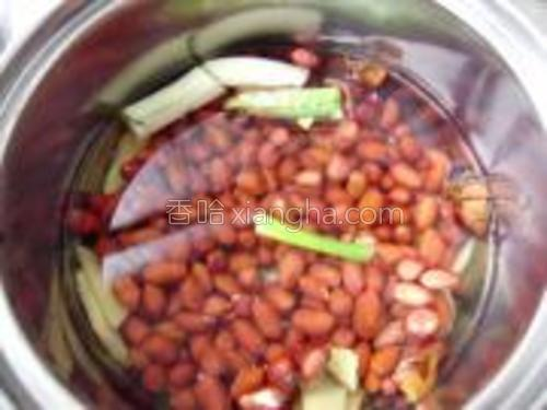 将葱段,姜片,大料放入锅中,加入清水,倒入清洗干净的花生米煮。