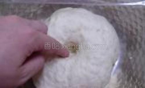 发酵至原来的2倍大左右,手指按进不会反弹回缩就可以了。