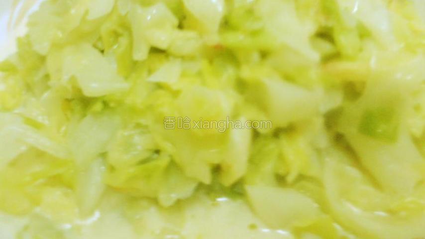 奶汁卷心菜