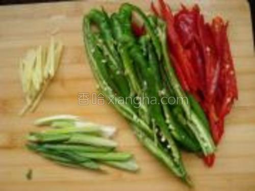 姜去皮洗净切丝,青、红辣椒洗净去蒂去子切斜片,蒜苗切斜段备用。