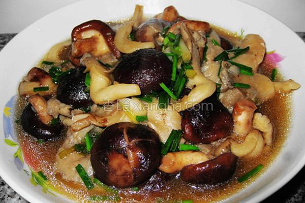 蚝油烩双菇的做法