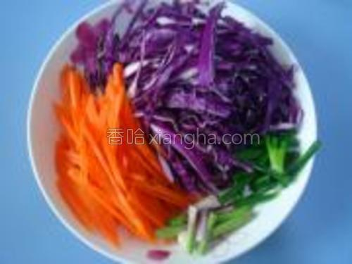 紫甘蓝洗净切丝、胡萝卜去皮洗净切丝、葱切段备用。