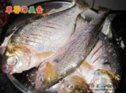在鱼身上撒上一层盐,腌制一会,使之入味。