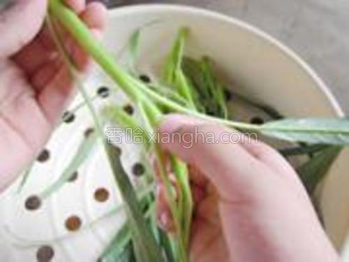 空心菜一节一叶为段,摘下。