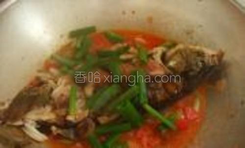 把炸好的鱼放进汤里,剩下的葱叶也都放进去,盖上盖子烧一小会。