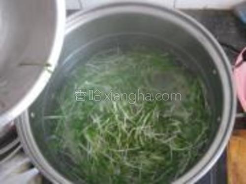 萝卜苗放入开水,水再次开就可以捞出了。