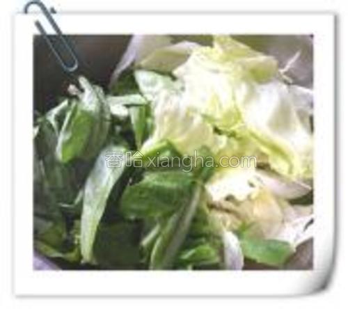 生菜,油麦菜,用手撕成大块儿。