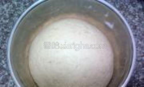 面团盖上保鲜膜放温暖处发酵至两倍左右大,内部呈疏松的蜂窝状。具体发酵的时间和温度等有关。