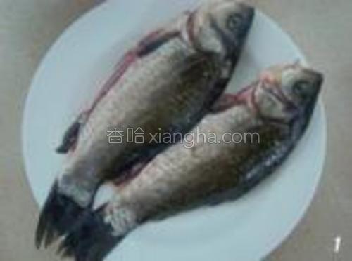 鲫鱼洗净,特别要去掉肚子里的黑膜,控干水份待用。