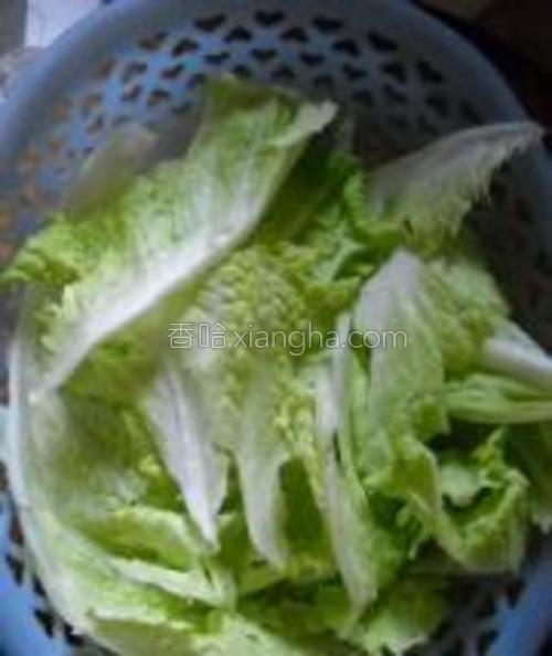白菜洗净、撕小片备用。