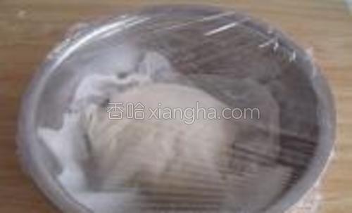 盖上湿布,包上保鲜膜,室温发酵到两倍大。